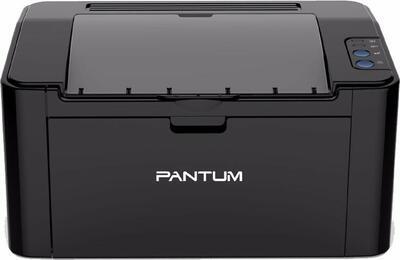 PANTUM - Pantum P2500 Mono Laser Yazıcı